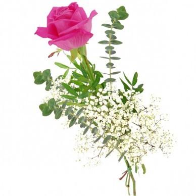Rose in pink versenden