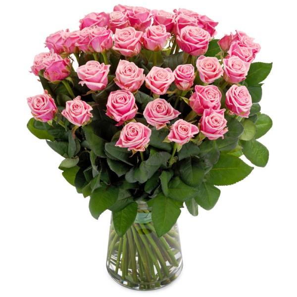 Ein Meer an Rosen in pink