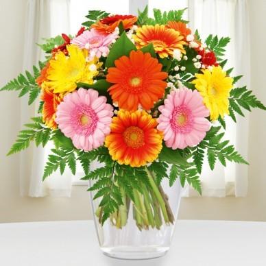 Blumenstrauß Gerberapracht versenden