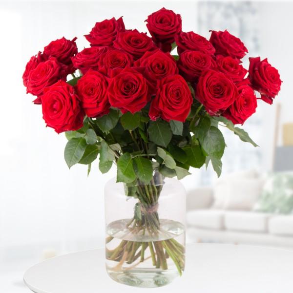 Rote Premium-Rosen Red Naomi (60 cm)