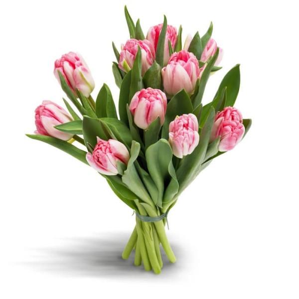 Pinker Tulpenstrauß