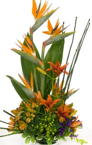 Tropisches Gesteck in orange